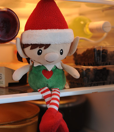 Christmas Elf Cooling Down in Fridge